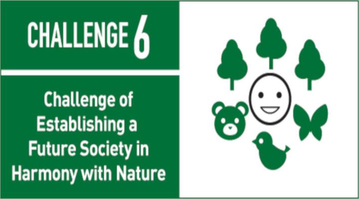 challenge 6 new